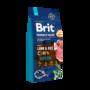 Brit-Premium-JUNIOR