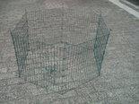Knaagdieren-ren-6-panelen-van-60x60